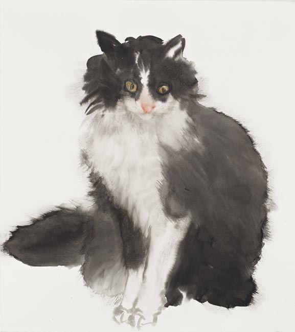Sylvester by Fiona McMonagle