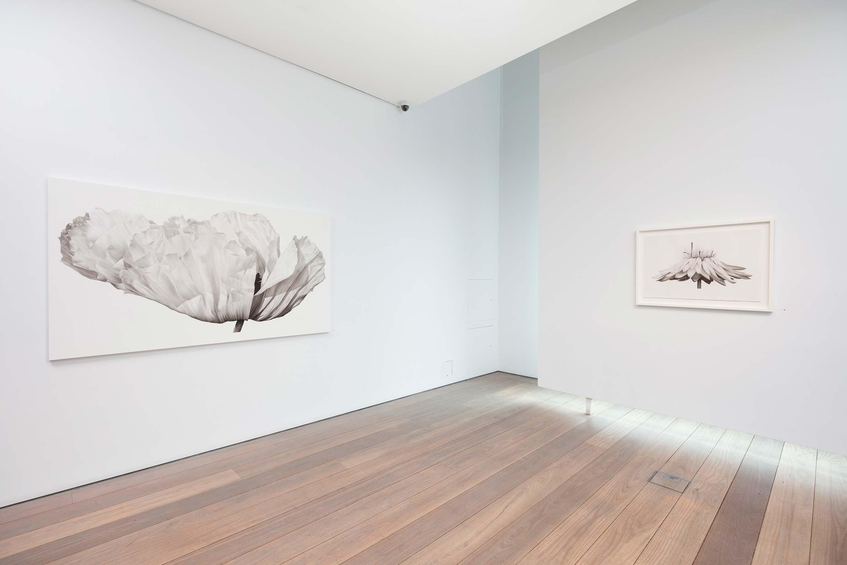 Olsen Gallery Sydney